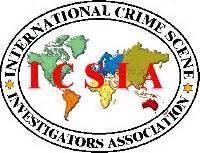 Criminal law dissertation examples